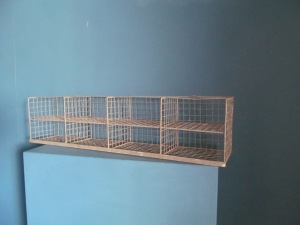 SS Metal Wire Shelving Storage